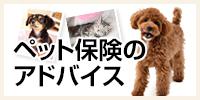 ペット保険のアドバイス