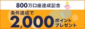 楽天銀行 新規口座開設&1万円以上の入金で2,000ポイントプレゼント