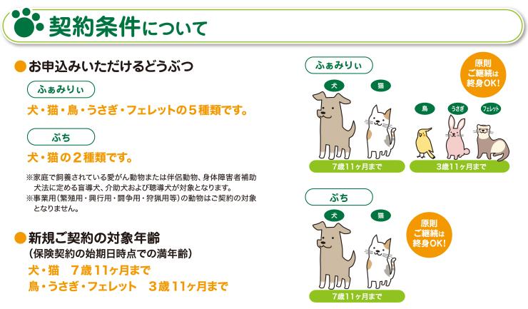 契約条件について お申込みいただけるどうぶつ 犬・猫の2種類です 新規ご契約の対象年齢 7歳11ケ月まで ご継続は終身OK!