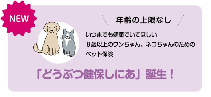 年齢の上限なし いつまでも健康でいてほしい 8歳以上のワンちゃん、ネコちゃんのためのペット保険 「どうぶつ健保しにあ」誕生!