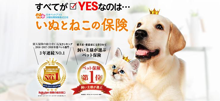 すべてがYESなのは… いぬとねこの保険 楽天の保険比較人気ランキング 2016・2017・2018年度ペット部門3年連続No.1 愛犬家・愛猫家に支持されて飼い主様が選ぶペット保険第一位