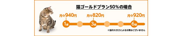 猫ゴールドプラン50%の場合 1歳月々940円 3歳月々820円 6歳月々920円 ※猫の大きさによる分類はございません。
